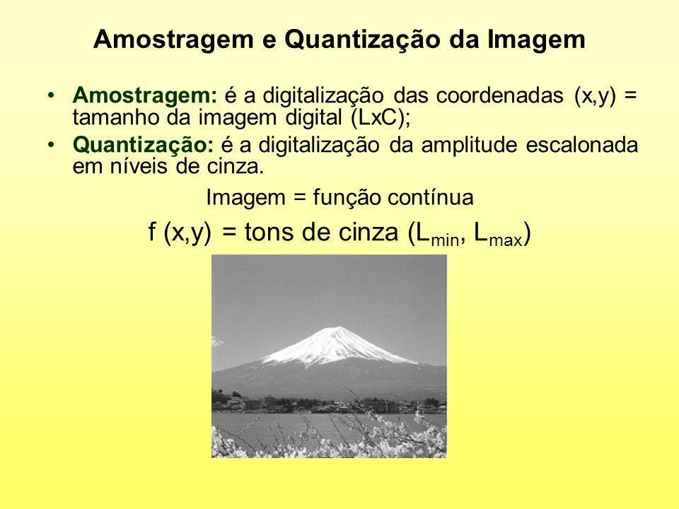 Amostragem e Quantização da Imagem