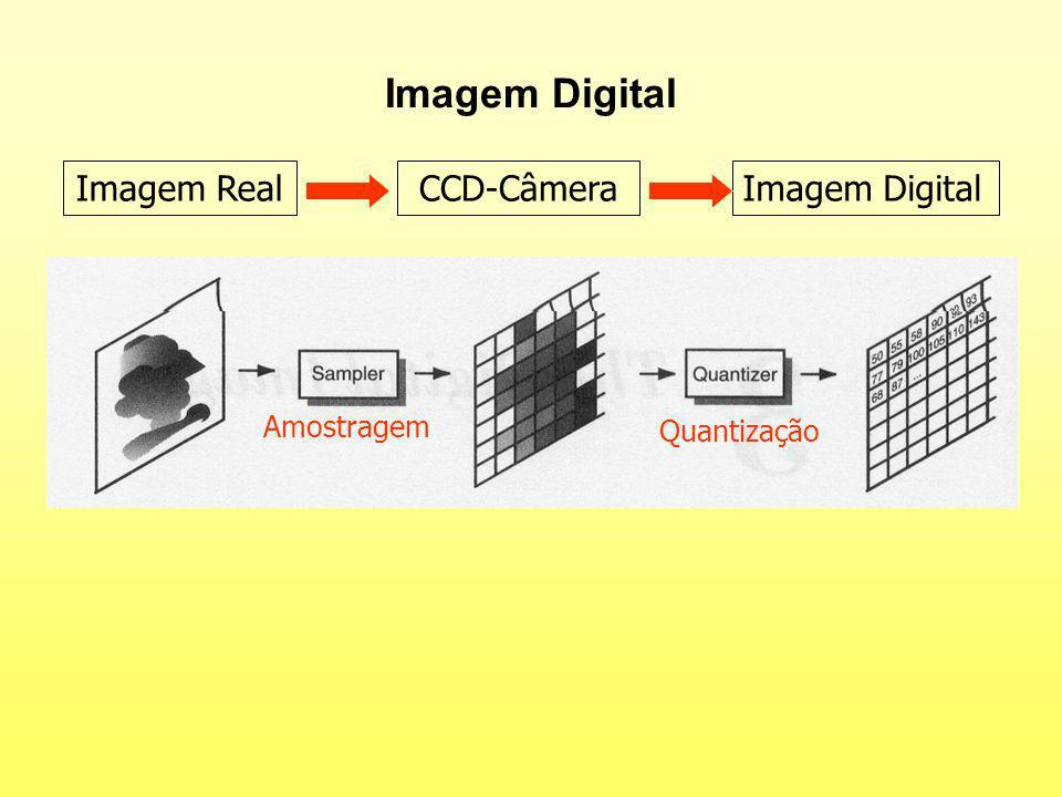 Imagem Digital Imagem Real CCD-Câmera Imagem Digital Amostragem