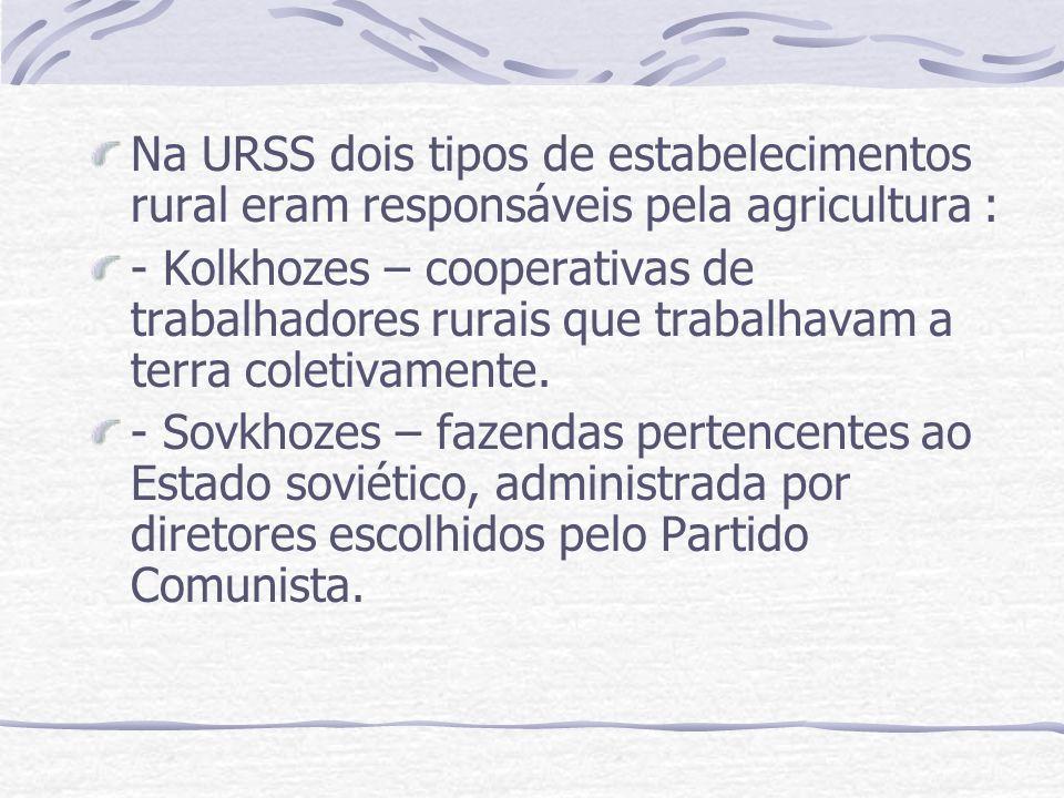 Na URSS dois tipos de estabelecimentos rural eram responsáveis pela agricultura :