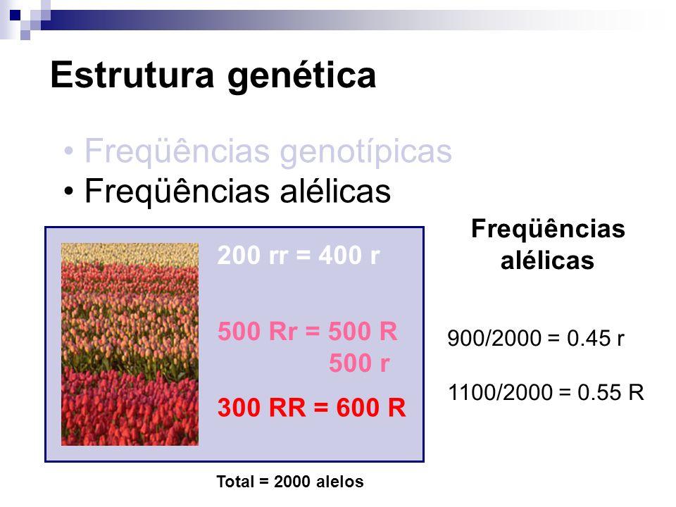 Estrutura genética Freqüências genotípicas Freqüências alélicas