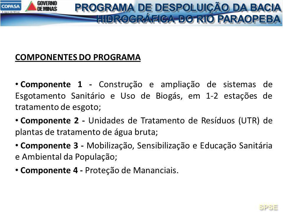 PROGRAMA DE DESPOLUIÇÃO DA BACIA HIDROGRÁFICA DO RIO PARAOPEBA