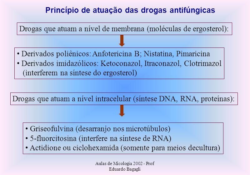 Princípio de atuação das drogas antifúngicas