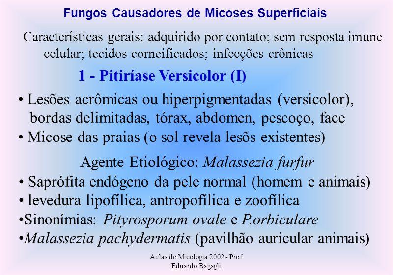 Fungos Causadores de Micoses Superficiais 1 - Pitiríase Versicolor (I)