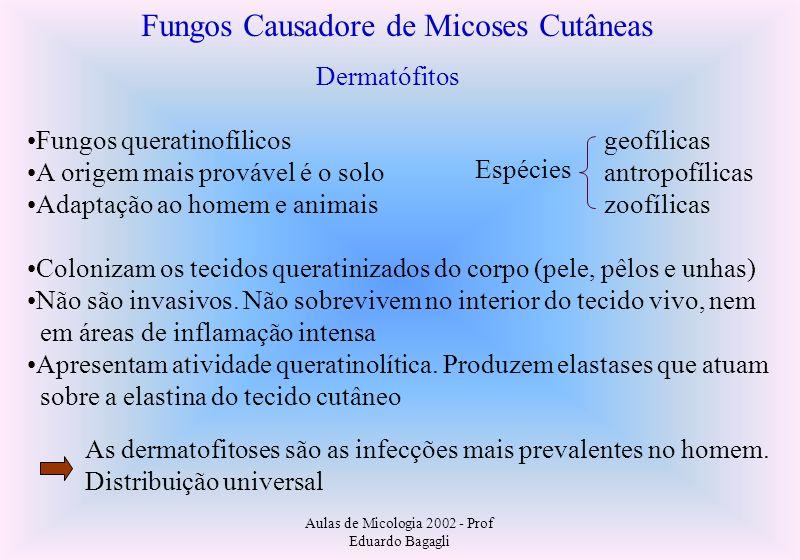 Fungos Causadore de Micoses Cutâneas