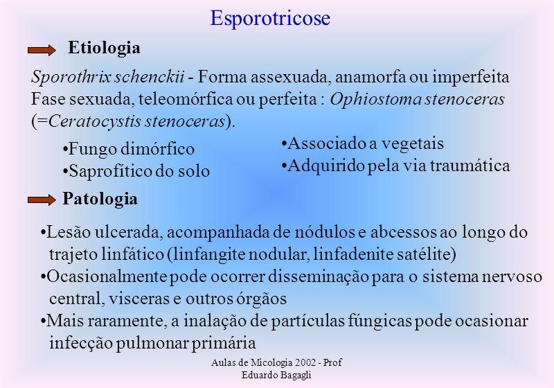 Aulas de Micologia 2002 - Prof Eduardo Bagagli