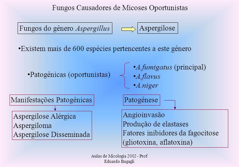 Fungos Causadores de Micoses Oportunistas