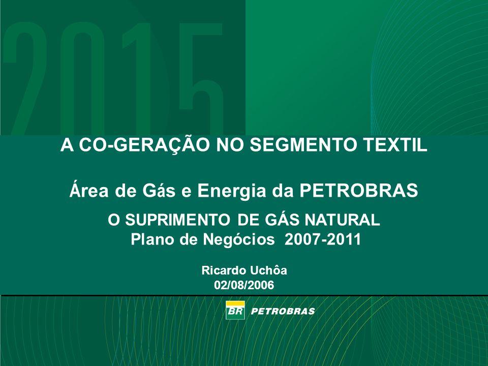A CO-GERAÇÃO NO SEGMENTO TEXTIL Área de Gás e Energia da PETROBRAS