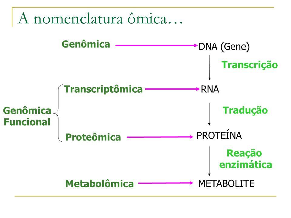 A nomenclatura ômica… Genômica DNA (Gene) Funcional Transcriptômica