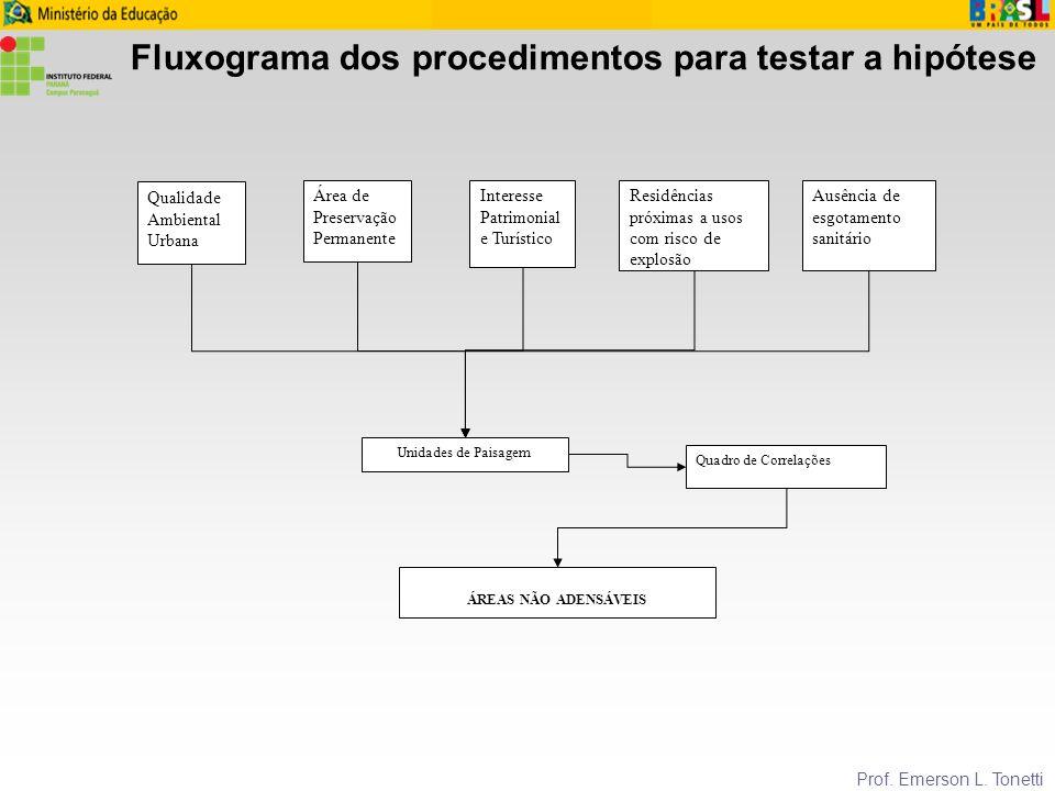 Fluxograma dos procedimentos para testar a hipótese