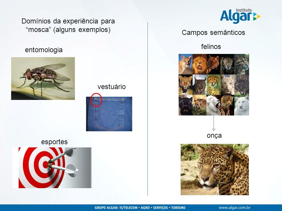 Domínios da experiência para mosca (alguns exemplos)