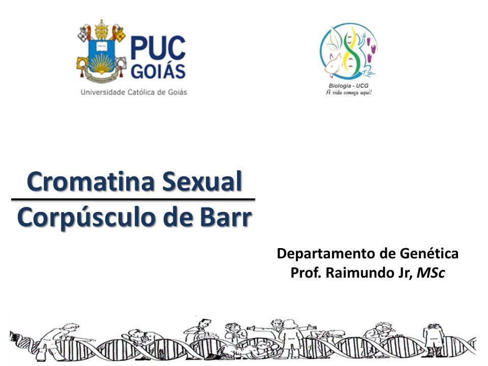 Cromatina Sexual Corpúsculo de Barr Departamento de Genética