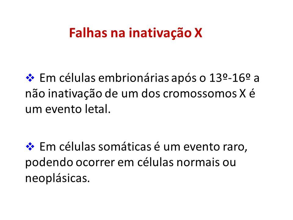 Falhas na inativação X Em células embrionárias após o 13º-16º a não inativação de um dos cromossomos X é um evento letal.