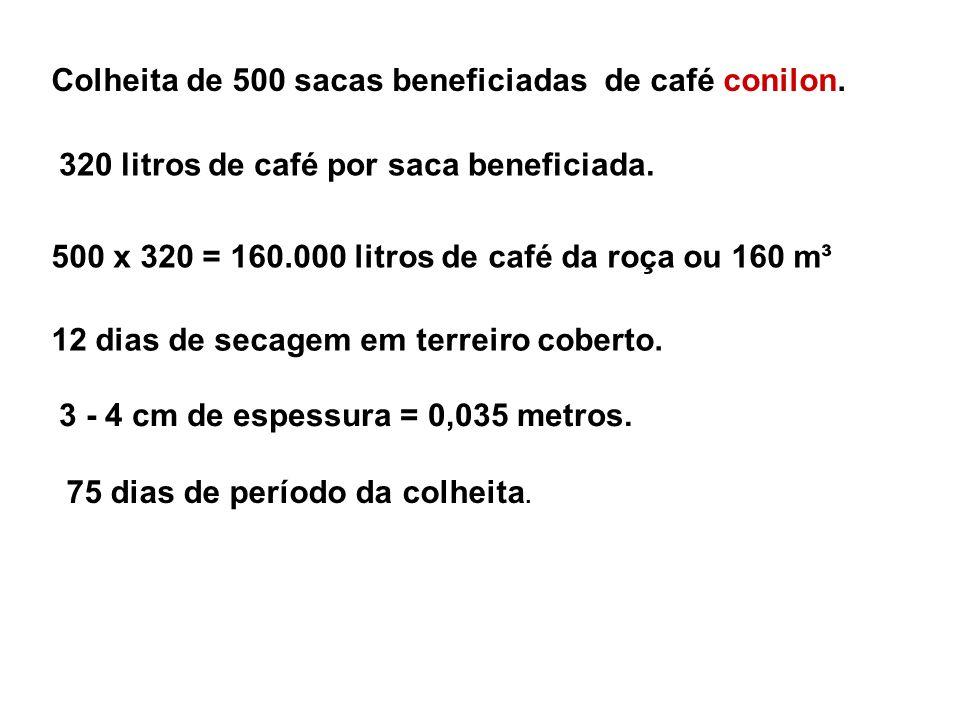 Colheita de 500 sacas beneficiadas de café conilon.