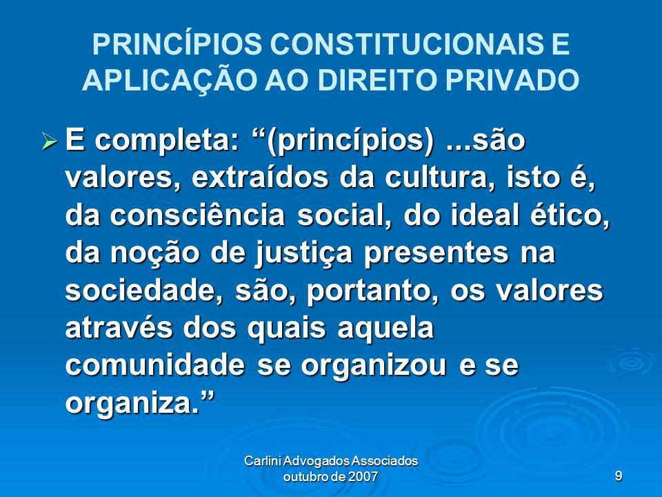 PRINCÍPIOS CONSTITUCIONAIS E APLICAÇÃO AO DIREITO PRIVADO
