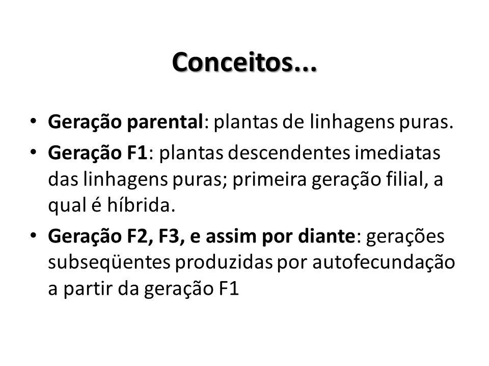 Conceitos... Geração parental: plantas de linhagens puras.