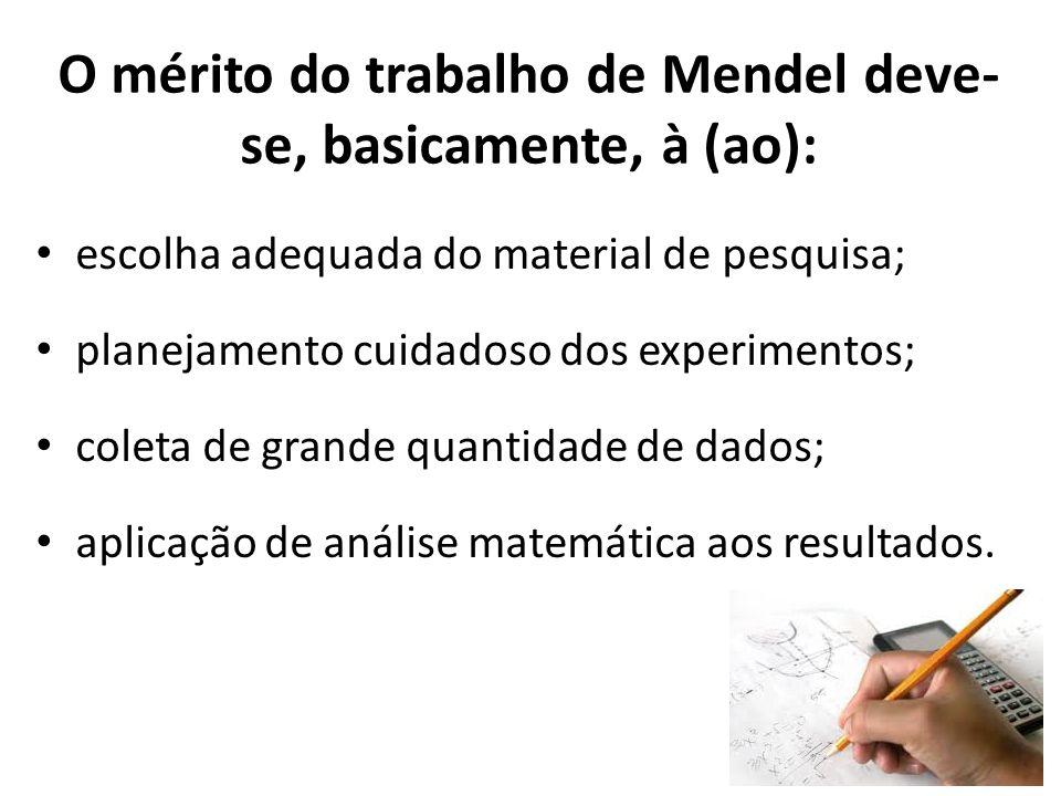 O mérito do trabalho de Mendel deve-se, basicamente, à (ao):