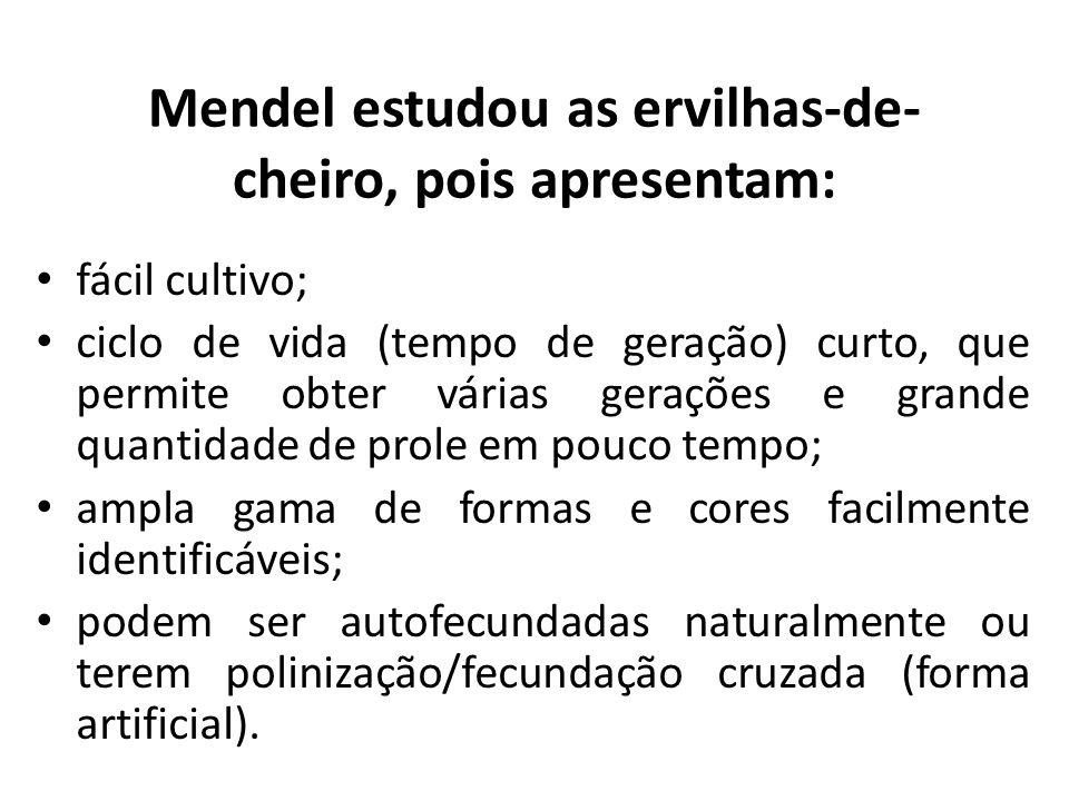 Mendel estudou as ervilhas-de-cheiro, pois apresentam: