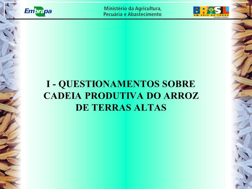 I - QUESTIONAMENTOS SOBRE CADEIA PRODUTIVA DO ARROZ