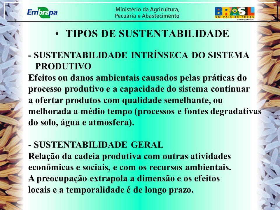 TIPOS DE SUSTENTABILIDADE