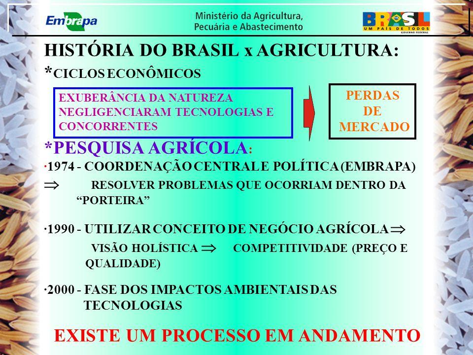 HISTÓRIA DO BRASIL x AGRICULTURA: *CICLOS ECONÔMICOS