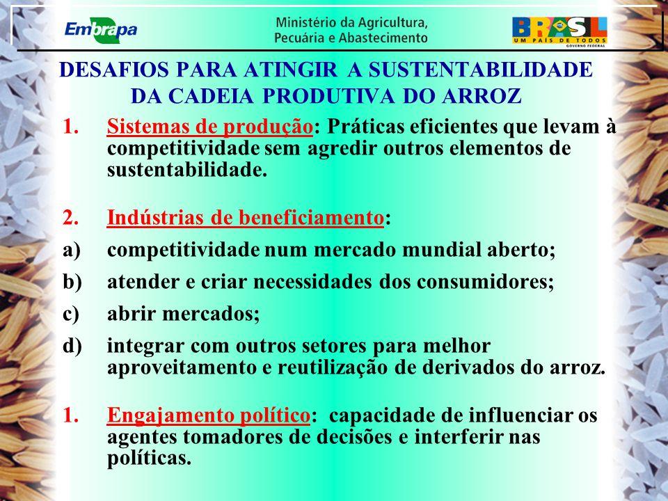 DESAFIOS PARA ATINGIR A SUSTENTABILIDADE DA CADEIA PRODUTIVA DO ARROZ