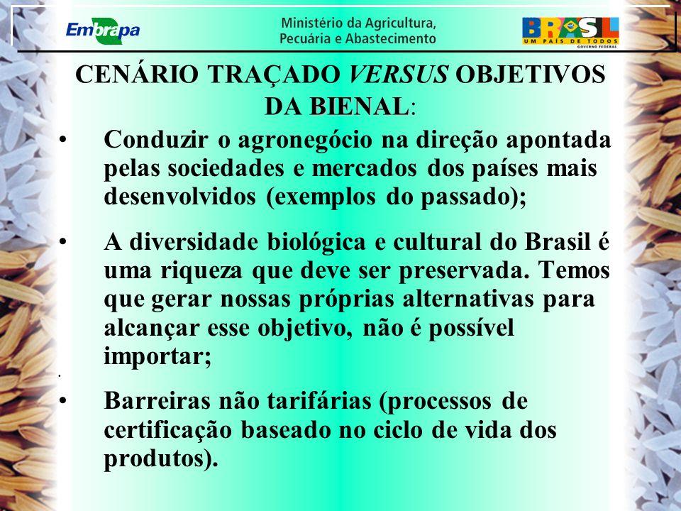 CENÁRIO TRAÇADO VERSUS OBJETIVOS DA BIENAL: