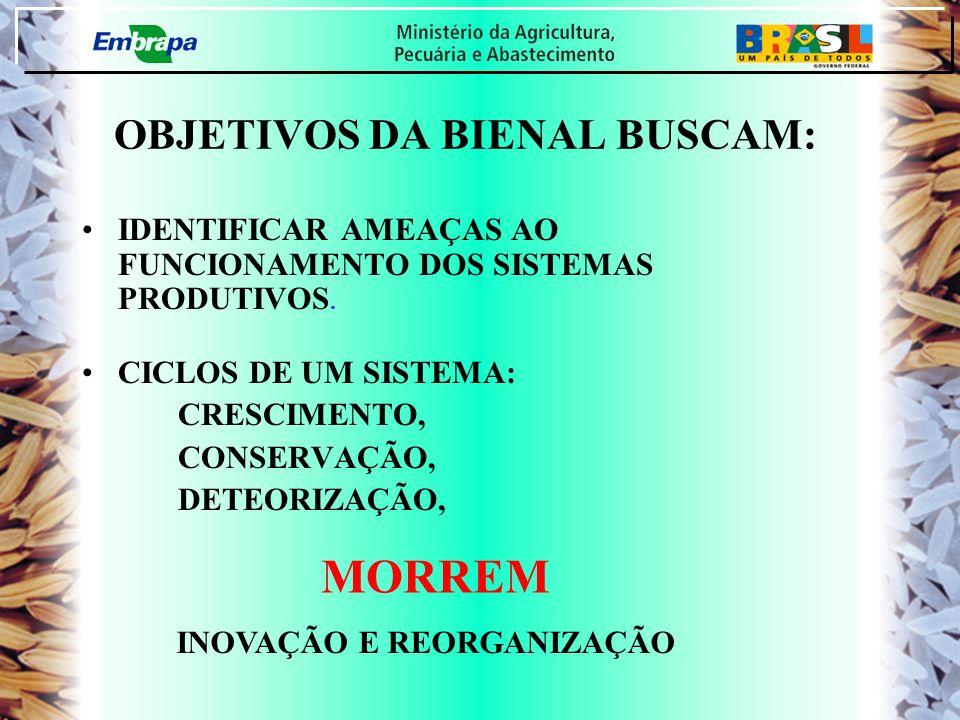 OBJETIVOS DA BIENAL BUSCAM: