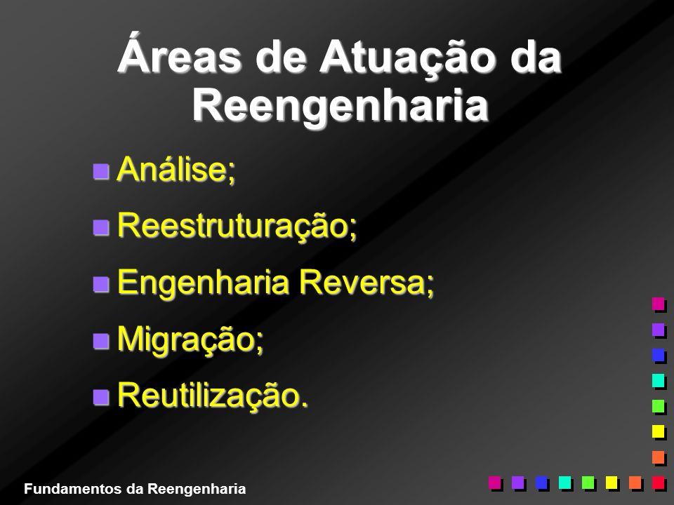 Áreas de Atuação da Reengenharia