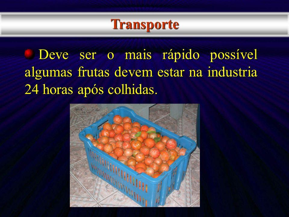Transporte Deve ser o mais rápido possível algumas frutas devem estar na industria 24 horas após colhidas.