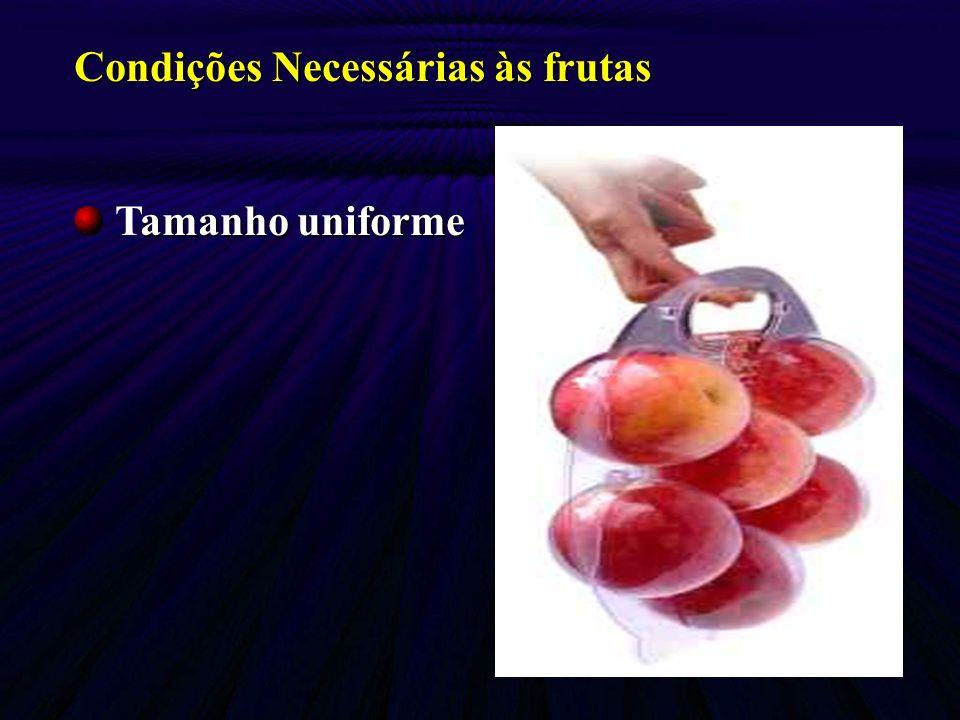 Condições Necessárias às frutas