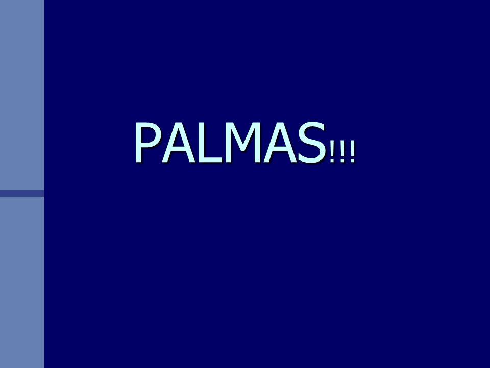 PALMAS!!!