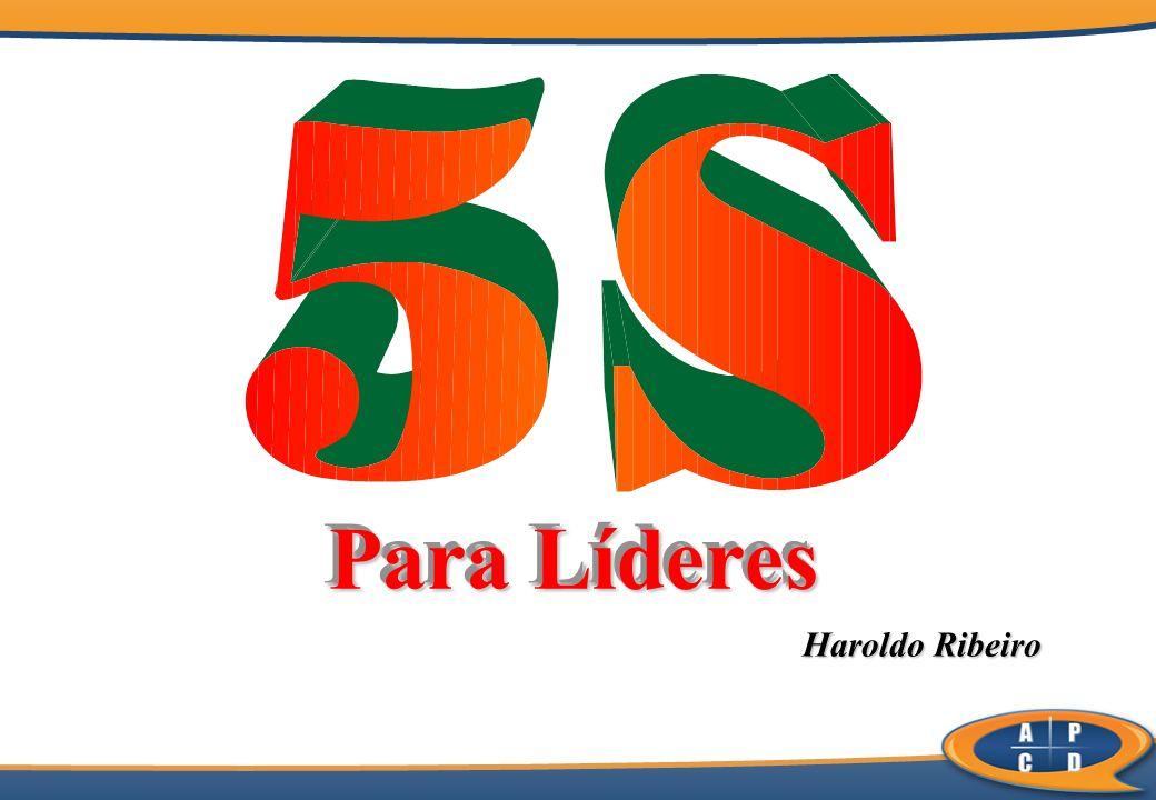 Para Líderes Haroldo Ribeiro