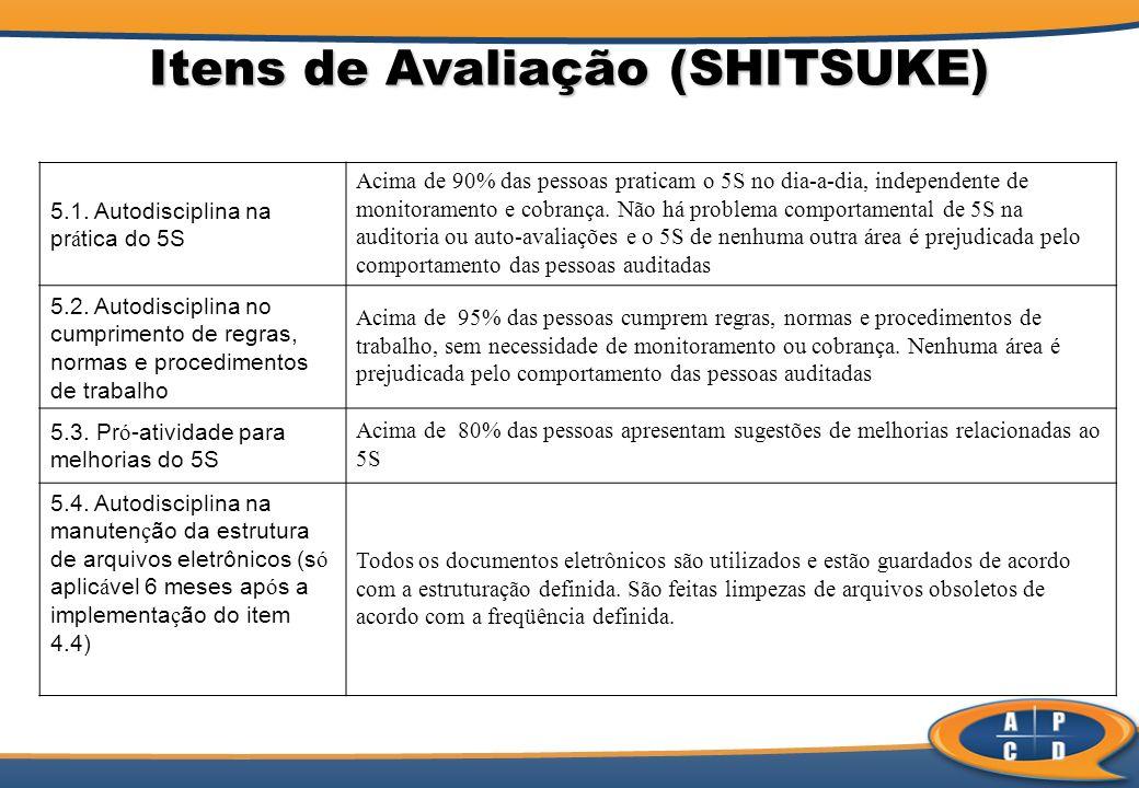 Itens de Avaliação (SHITSUKE)