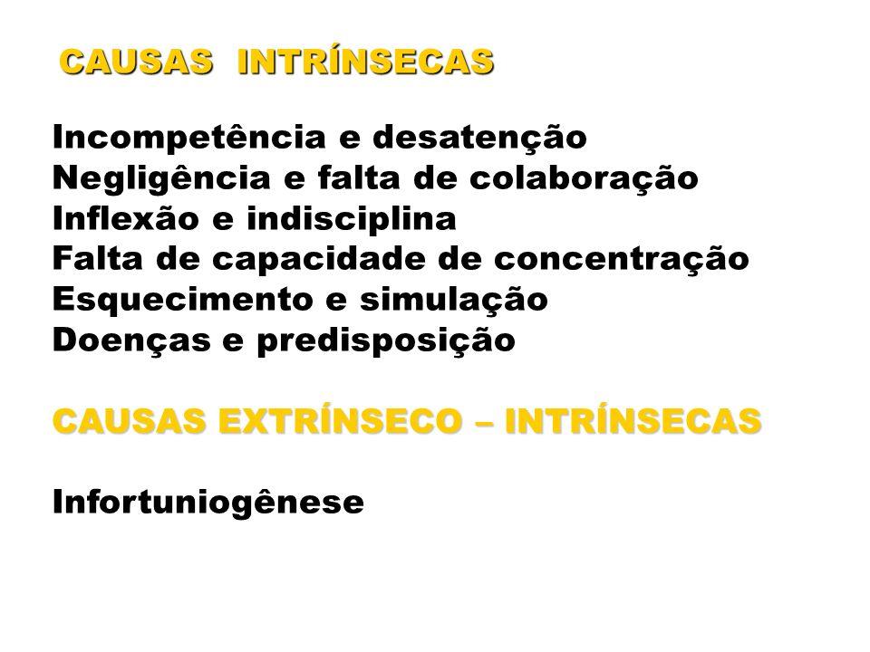 CAUSAS INTRÍNSECAS Incompetência e desatenção. Negligência e falta de colaboração. Inflexão e indisciplina.