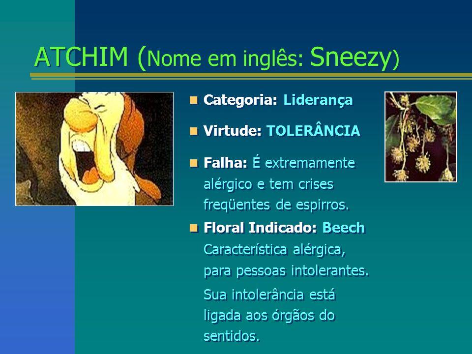 ATCHIM (Nome em inglês: Sneezy)