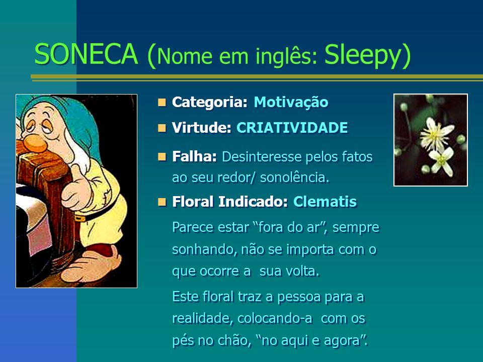 SONECA (Nome em inglês: Sleepy)
