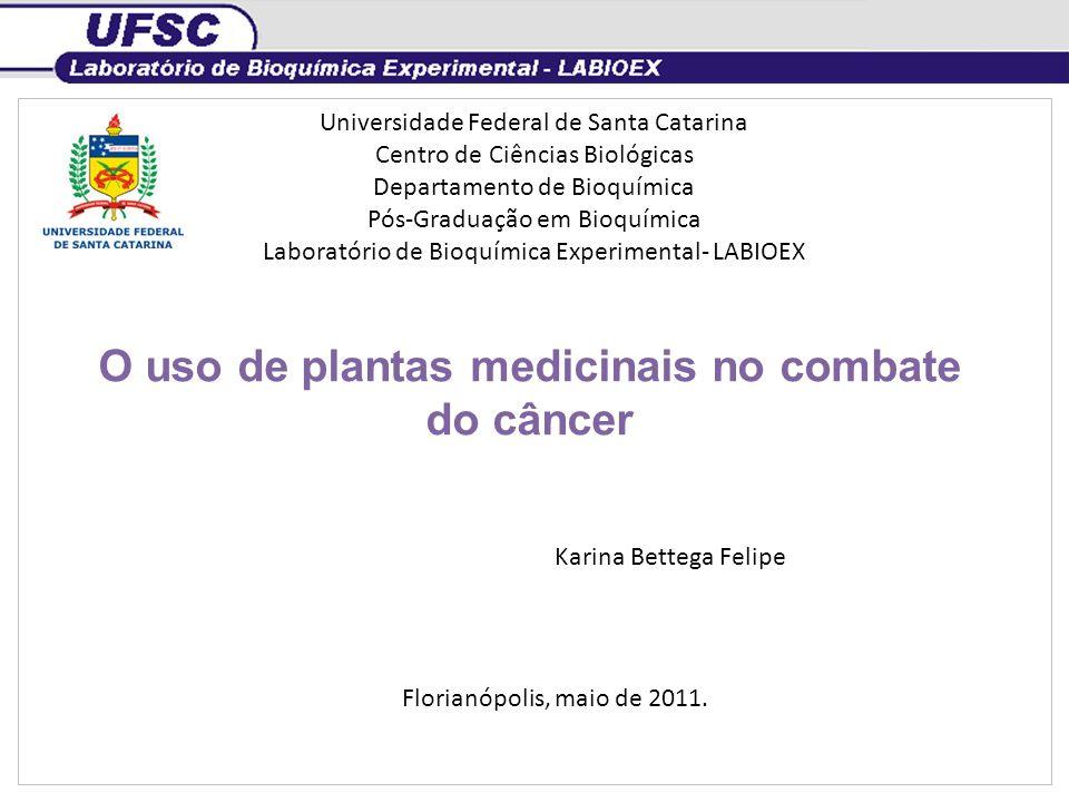 O uso de plantas medicinais no combate do câncer