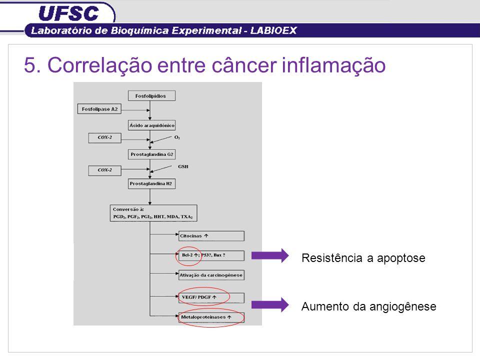 5. Correlação entre câncer inflamação