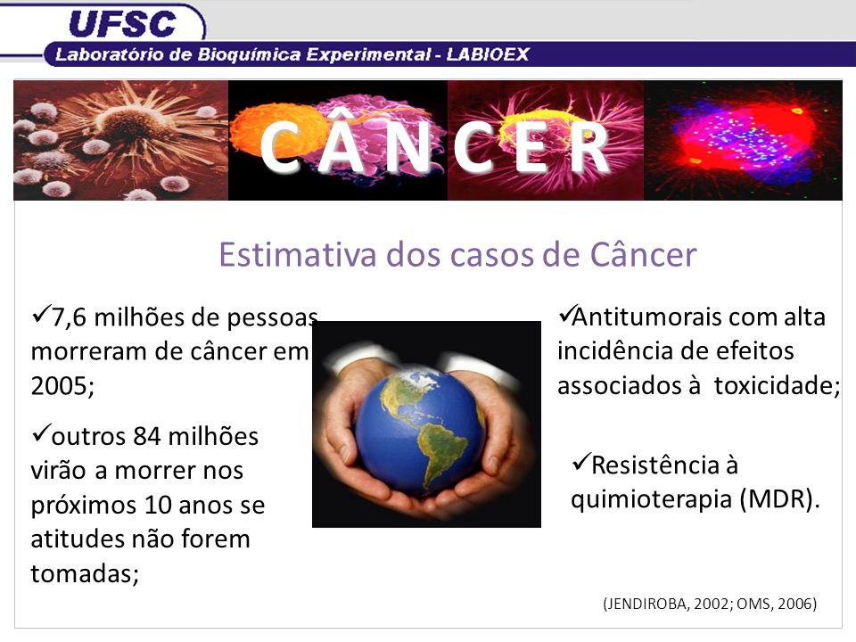 Estimativa dos casos de Câncer