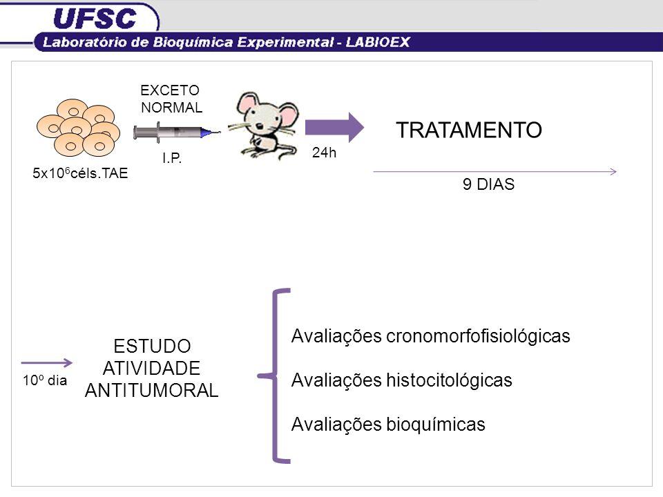 { TRATAMENTO Avaliações cronomorfofisiológicas ESTUDO ATIVIDADE