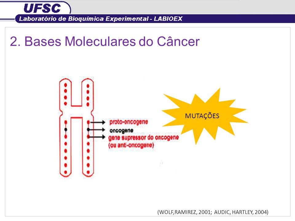 2. Bases Moleculares do Câncer
