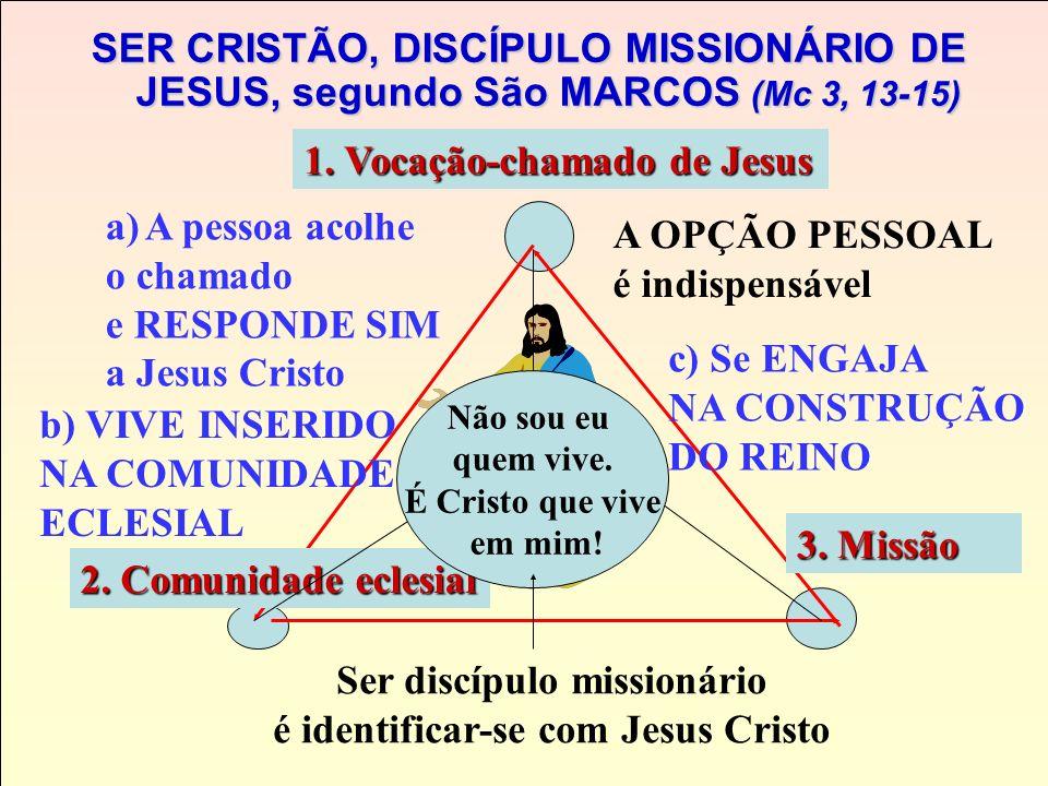 Ser discípulo missionário é identificar-se com Jesus Cristo