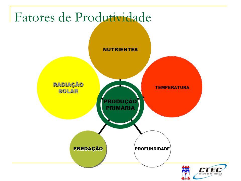 Fatores de Produtividade