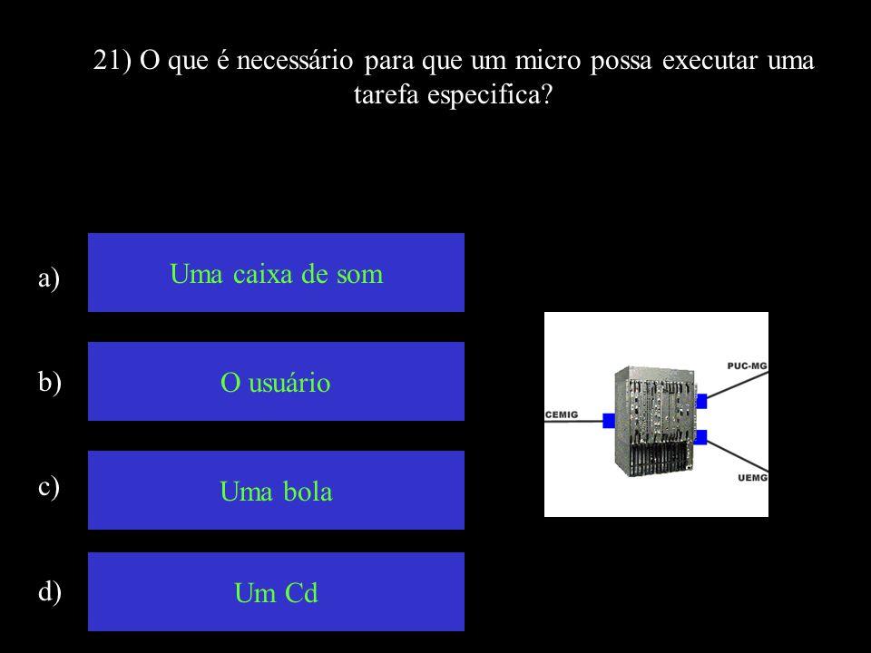 21) O que é necessário para que um micro possa executar uma tarefa especifica
