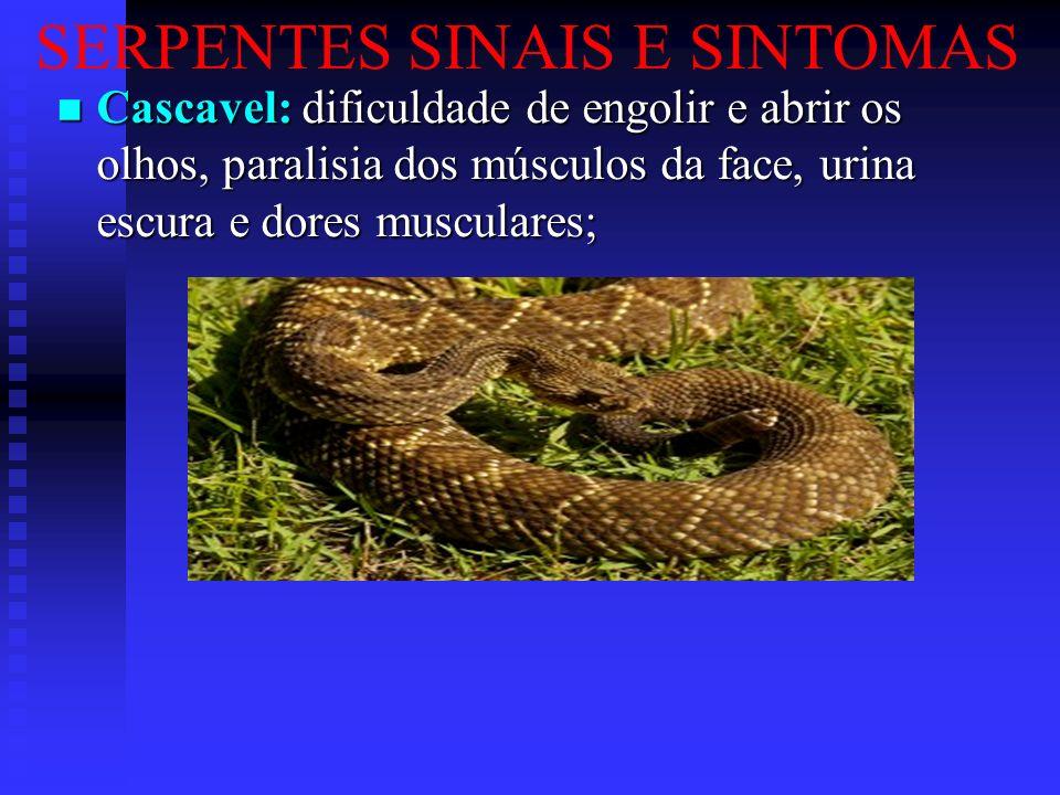 SERPENTES SINAIS E SINTOMAS