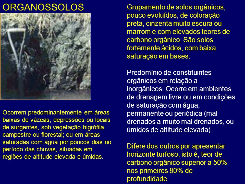 ORGANOSSOLOS