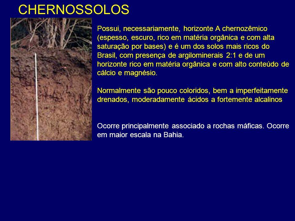 CHERNOSSOLOS