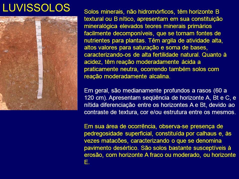 LUVISSOLOS
