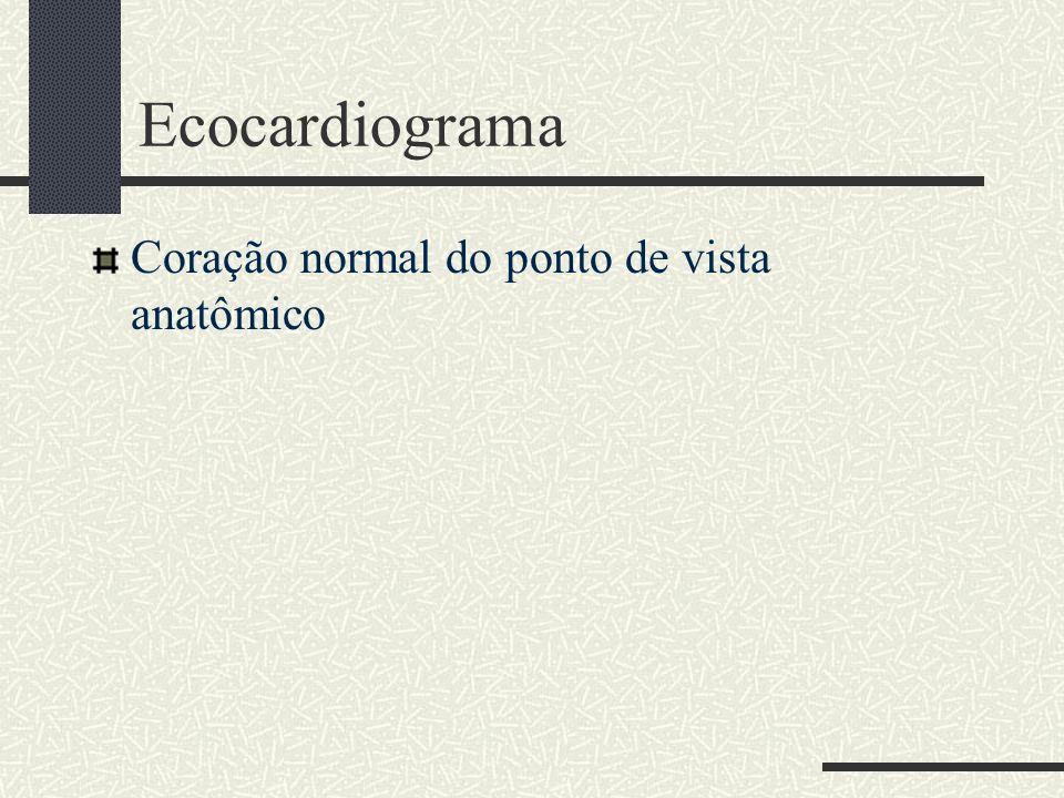 Ecocardiograma Coração normal do ponto de vista anatômico