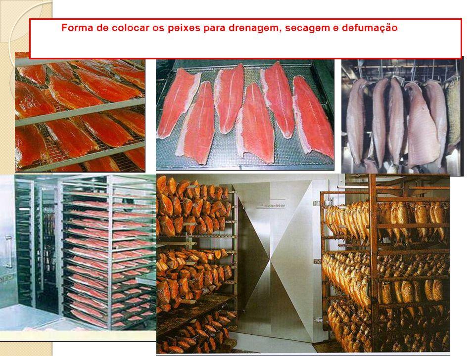 Forma de colocar os peixes para drenagem, secagem e defumação